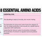 8 Essential Amino Acids Cheat Sheet Free